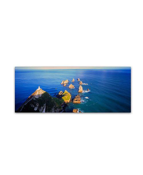 "Trademark Global David Evans 'Nugget Point-NZ' Canvas Art - 19"" x 6"""