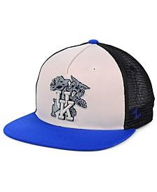 Zephyr Kentucky Wildcats Paradigm Snapback Cap