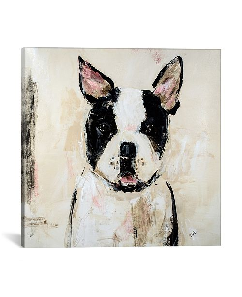 """iCanvas Jasmine by Julian Spencer Gallery-Wrapped Canvas Print - 26"""" x 26"""" x 0.75"""""""