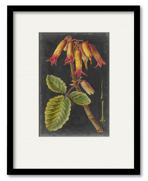 """Courtside Market Dramatic Tropicals III 16"""" x 20"""" Framed and Matted Art"""
