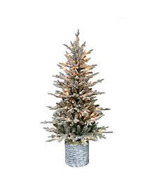 International 4.5 ft. Pre-Lit Potted Flocked Scandinavian Fir Artificial Christmas Tree with 70 UL-Listed Clear Lights