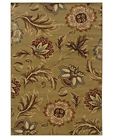 CLOSEOUT! Oriental Weavers Area Rug, Pember 701J Floral Brown 8' x 10'