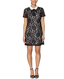 Petite Collared Lace Shift Dress