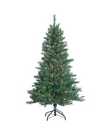 5Ft. Pre-Lit Colorado Spruce with 200 clear lights
