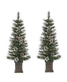 4Ft Potted Hard Mixed Needle Loveland Spruce with Iced Tips, Pine Cones, Red Berries and 50 Clear White Lights - Set of 2