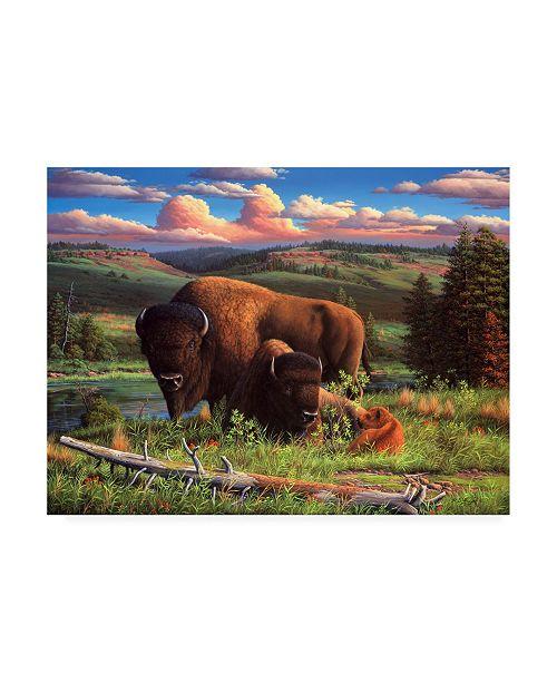 "Trademark Global R W Hedge Buffalo Nation Canvas Art - 36.5"" x 48"""