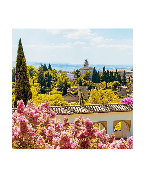 """Trademark Global Philippe Hugonnard Made in Spain 3 Flowers of Alhambra with Fall Colors Canvas Art - 36.5"""" x 48"""""""