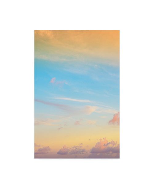 "Trademark Global Philippe Hugonnard Viva Mexico Sky at Sunset IV Canvas Art - 19.5"" x 26"""