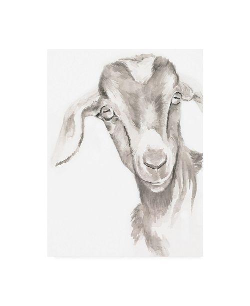 "Trademark Global Jennifer Paxton Parker Farm Faces IV Canvas Art - 19.5"" x 26"""