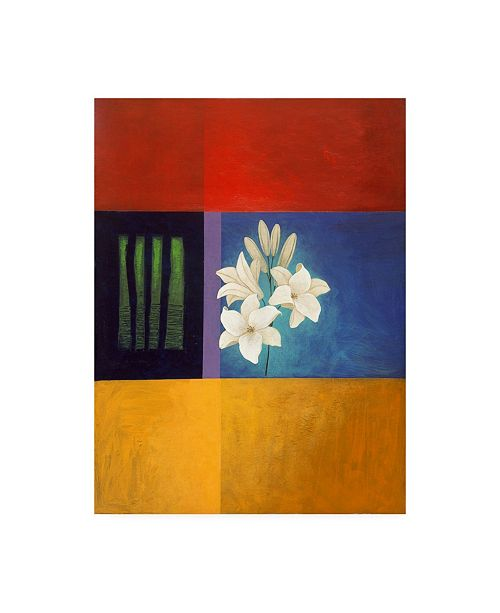 "Trademark Global Pablo Esteban White Flowers and Stripes Canvas Art - 27"" x 33.5"""
