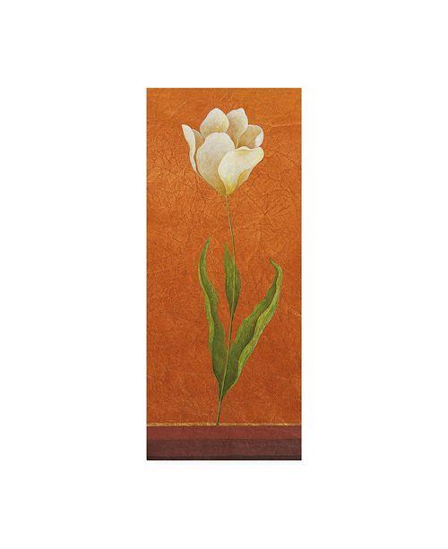 "Trademark Global Pablo Esteban White Flower on Orange Canvas Art - 36.5"" x 48"""