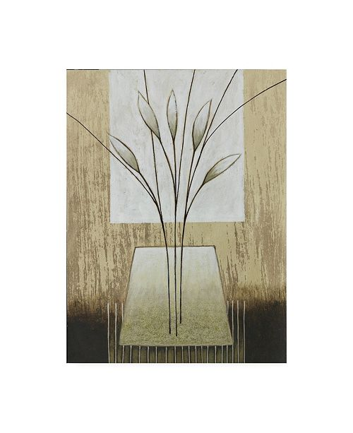 """Trademark Global Pablo Esteban Tan and White Floral Abstract Canvas Art - 27"""" x 33.5"""""""