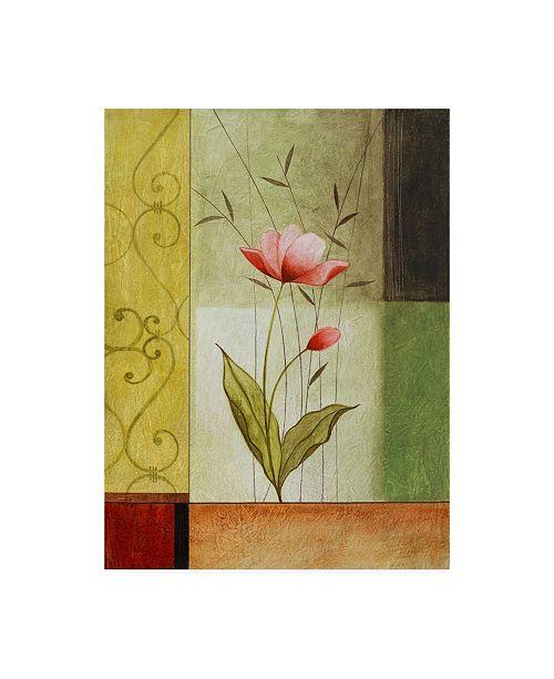 "Trademark Global Pablo Esteban Pink Flower with Scrolls Canvas Art - 27"" x 33.5"""