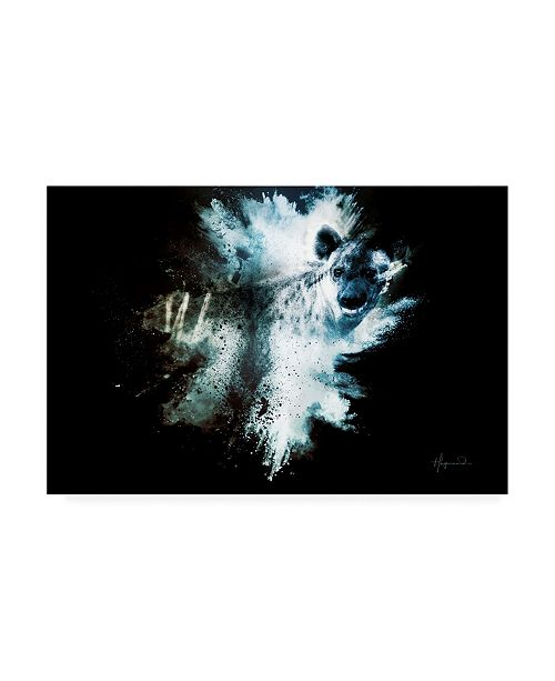 "Trademark Global Philippe Hugonnard Wild Explosion Collection - the Hyena Canvas Art - 36.5"" x 48"""