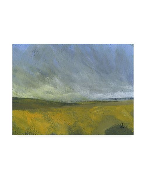 "Trademark Global Paul Baile Open Moor Canvas Art - 27"" x 33.5"""