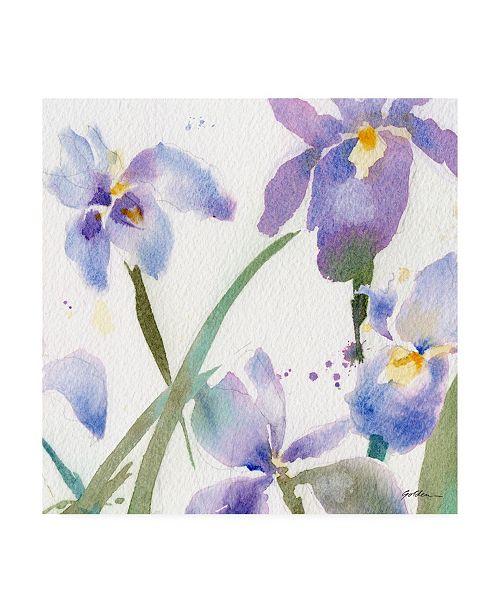 "Trademark Global Sheila Golde Irises Violet Canvas Art - 15.5"" x 21"""