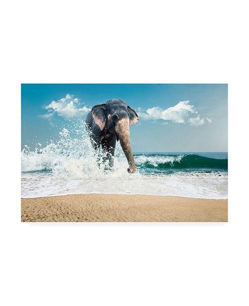 """Trademark Global PhotoINC Studio Elephant on the Beach Canvas Art - 19.5"""" x 26"""""""