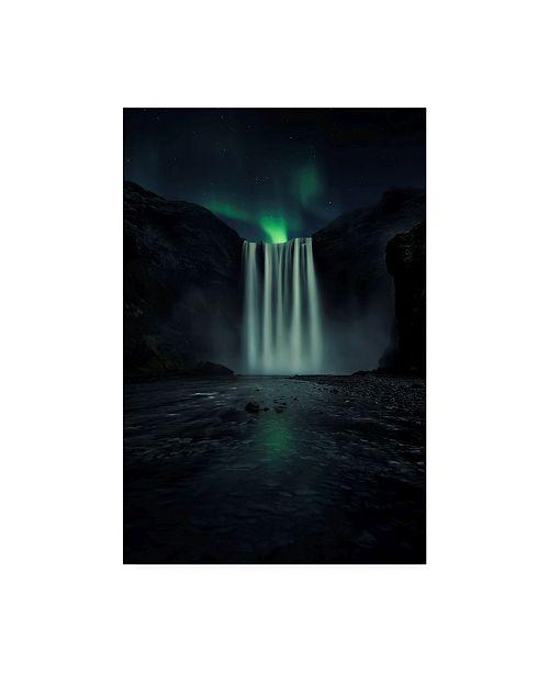 "Trademark Global Jorge Ruiz Dueso Green Night Canvas Art - 20"" x 25"""