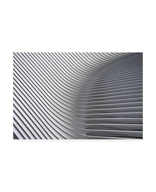 "Trademark Global Linda Wride Calatrava Curves 2 Canvas Art - 20"" x 25"""