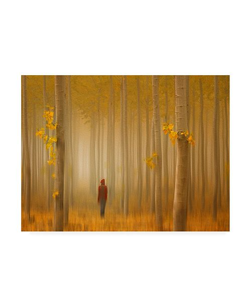 "Trademark Global Lydia Jacobs Lost in Autumn Canvas Art - 20"" x 25"""