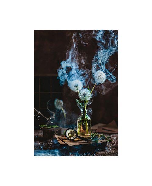 """Trademark Global Dina Belenko Smoakin Summer Canvas Art - 20"""" x 25"""""""