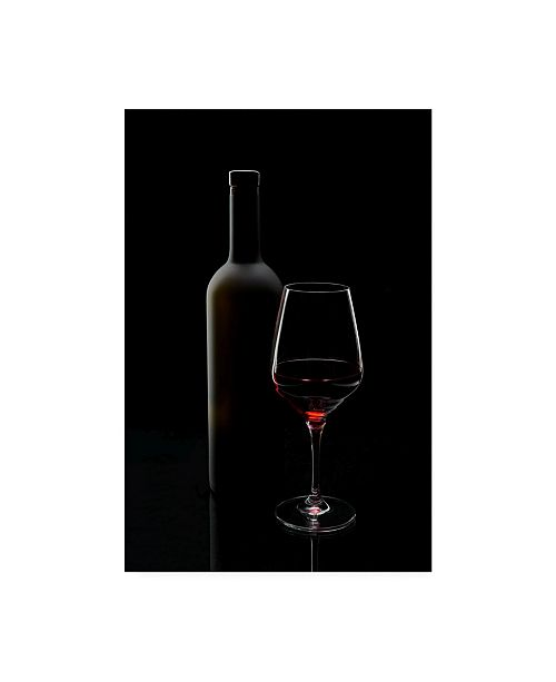 "Trademark Global Sergei Smirnov Red Wine Still Life Canvas Art - 20"" x 25"""