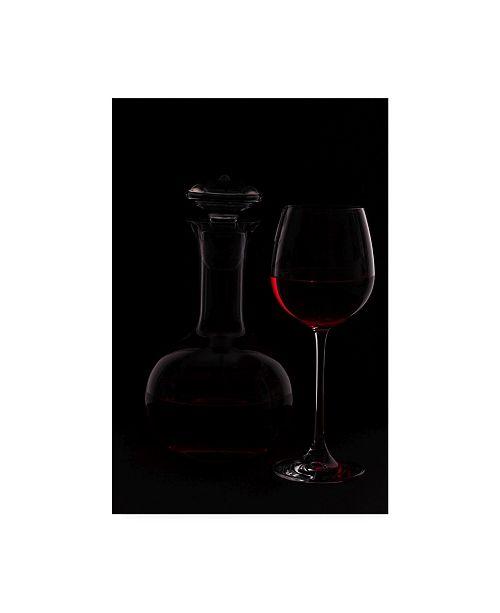 "Trademark Global Rainer Czerwonka Red Wine Photography Canvas Art - 15"" x 20"""