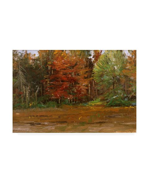 "Trademark Global Michael Budden Autumn Colored Trees Canvas Art - 15"" x 20"""
