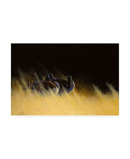 "Trademark Global Michael Budden Morning Solitude Geese Canvas Art - 15"" x 20"""