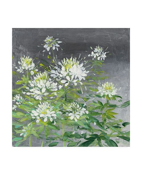 "Trademark Global Julia Purinton Farmhouse Cleome II Canvas Art - 27"" x 33"""