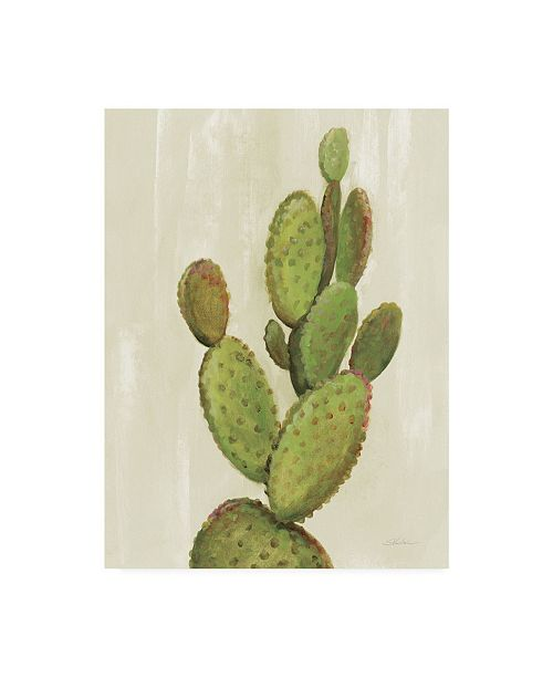 "Trademark Global Silvia Vassileva Front Yard Cactus I Canvas Art - 20"" x 25"""