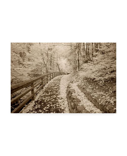 "Trademark Global Monte Nagler Fence and Pathway Munising Michigan Canvas Art - 20"" x 25"""