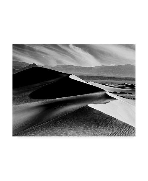 "Trademark Global Monte Nagler Dunes at Mesquite Flats Canvas Art - 15"" x 20"""