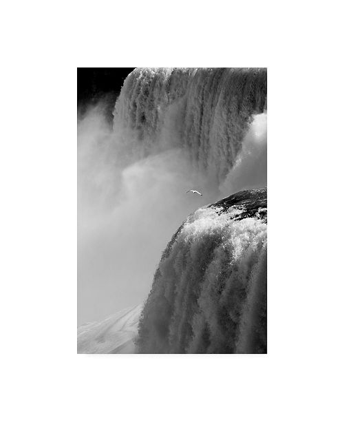 "Trademark Global Monte Nagler American Falls Niagara Falls New York Canvas Art - 37"" x 49"""