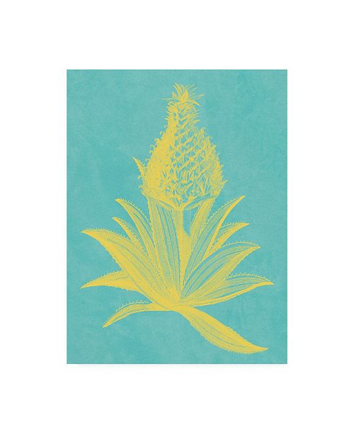 "Trademark Global Vision Studio Pineapple Frais I Canvas Art - 20"" x 25"""