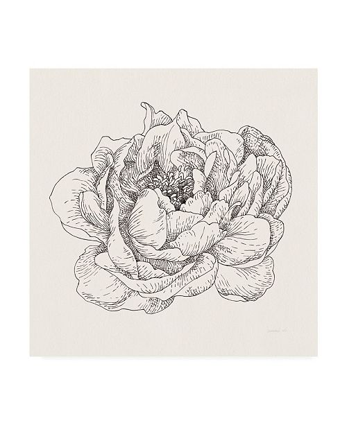"Trademark Global Danhui Nai Pen and Ink Florals V Canvas Art - 19.5"" x 26"""