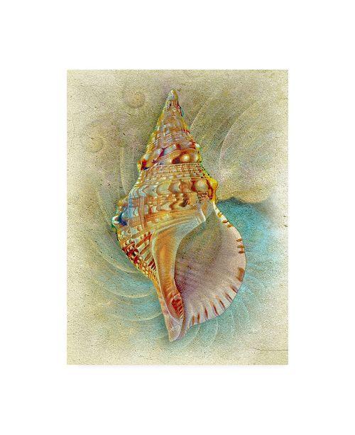 "Trademark Global Steve Hunziker Aquatica I Canvas Art - 36.5"" x 48"""