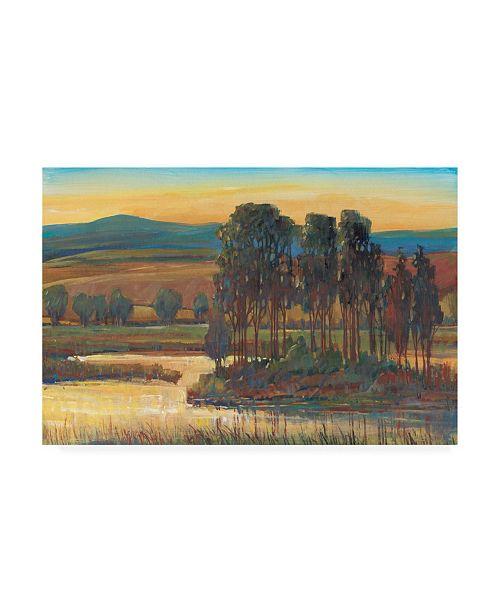 "Trademark Global Tim Otoole Open Inlet Trees II Canvas Art - 19.5"" x 26"""