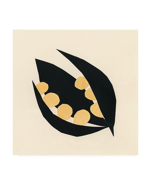 "Trademark Global Renee W. Stramel Mod Pod IV Canvas Art - 36.5"" x 48"""