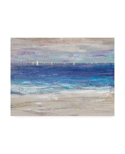 "Trademark Global Tim O'Toole Distant Regatta I Canvas Art - 19.5"" x 26"""