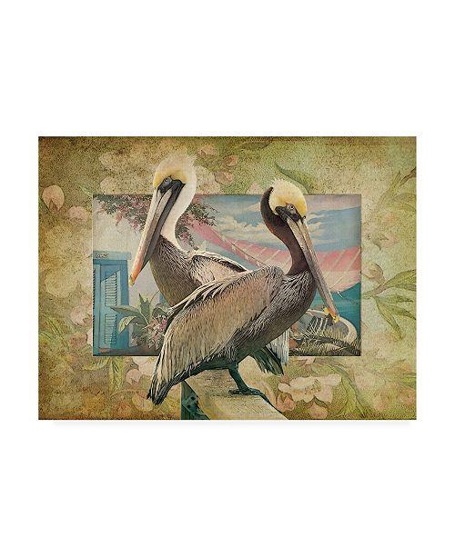 "Trademark Global Steve Hunziker Pelican Paradise IV Canvas Art - 36.5"" x 48"""