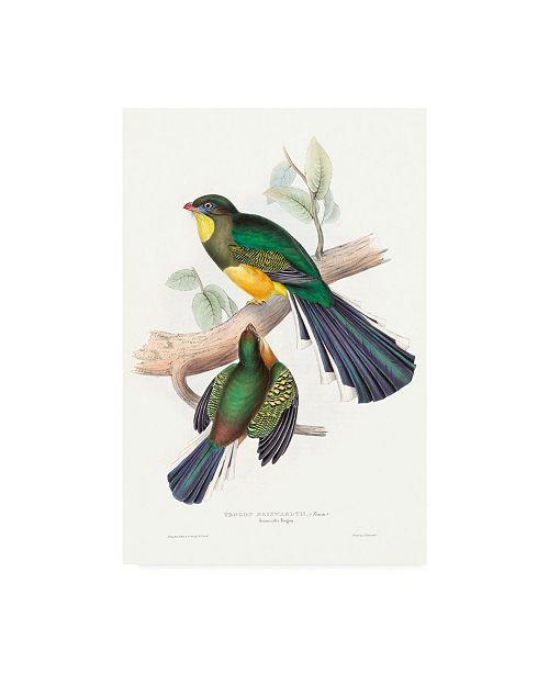 "Trademark Global John Gould Tropical Trogons I Canvas Art - 36.5"" x 48"""