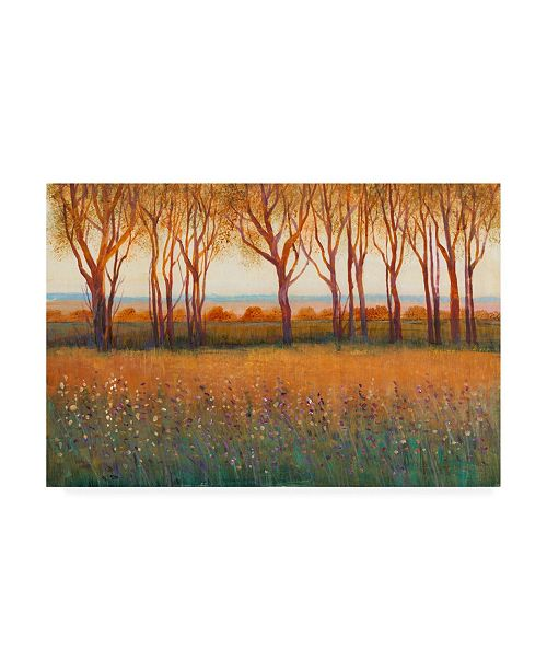 """Trademark Global Tim O'Toole Glow in the Afternoon I Canvas Art - 19.5"""" x 26"""""""