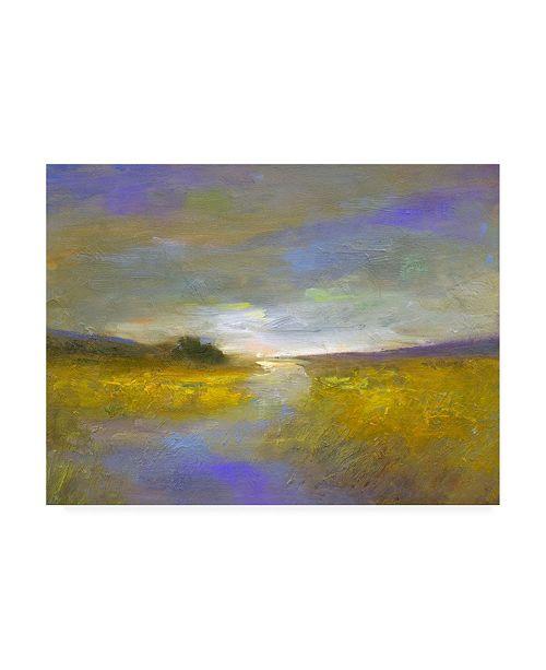 "Trademark Global Sheila Finch Mustard Fields at Dusk Canvas Art - 36.5"" x 48"""
