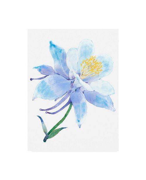 "Trademark Global Tim OToole Columbine Bloom I Canvas Art - 36.5"" x 48"""