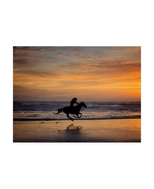"Trademark Global PH Burchett Sunkissed Horses IV Canvas Art - 27"" x 33.5"""
