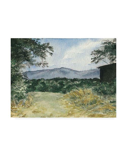"Trademark Global Natasha Chabot Virginia Woods III Canvas Art - 36.5"" x 48"""