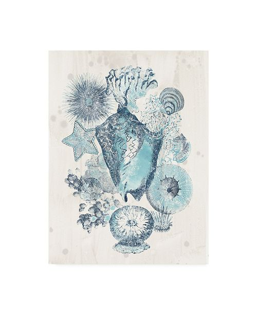 "Trademark Global June Erica Vess Coastal Melange III Canvas Art - 19.5"" x 26"""