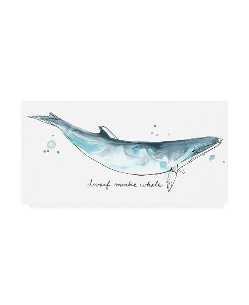 "Trademark Global June Erica Vess Cetacea Dwarf Minke Whale Canvas Art - 19.5"" x 26"""
