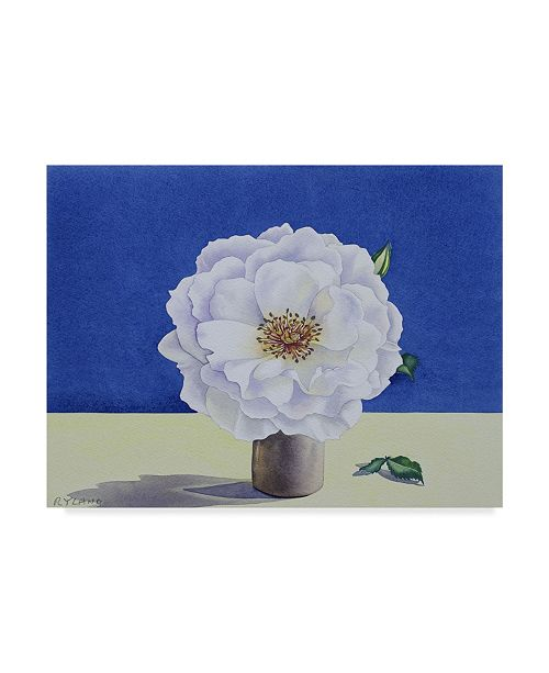"Trademark Global Christopher Ryland White Rose, 2018 Canvas Art - 15"" x 20"""